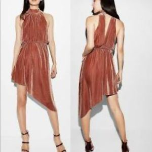 Express velvet Fall colored asymmetrical dress M